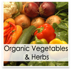 Oconomowoc Landscape Supply & Garden Center Organic Vegetables & Herbs